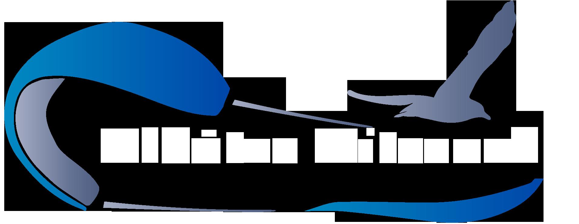Albatre Kitesurf
